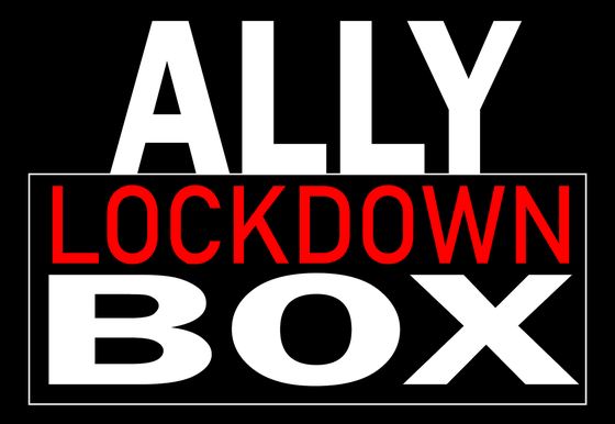 Ally lockdown box